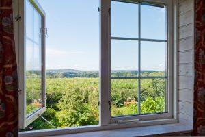 ett fönster mot äppelträdgården från lägenhet tre