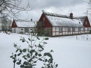 gården snötäckt