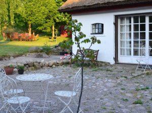 Valnötsträd på stenor