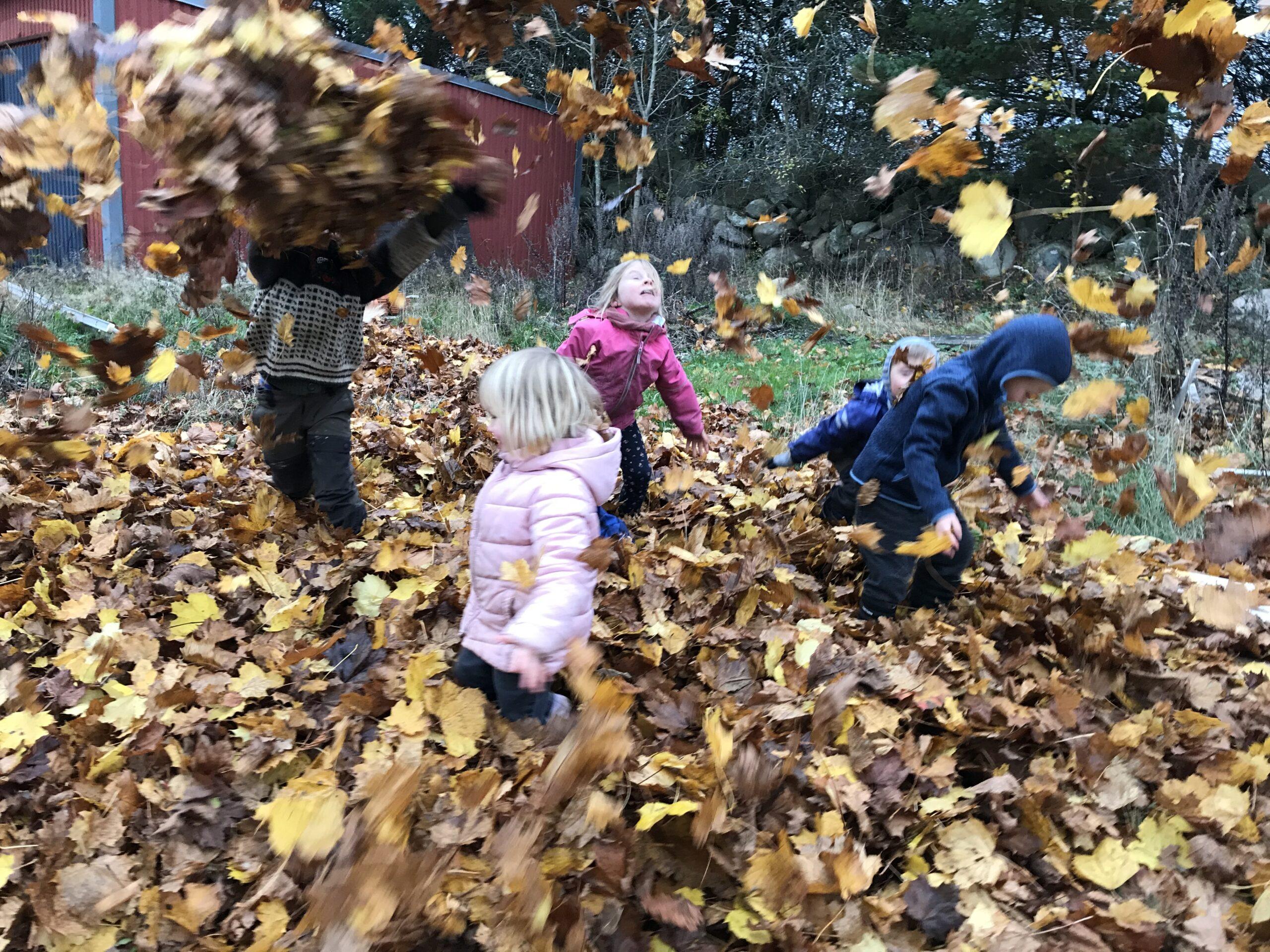Barnen leker i löven